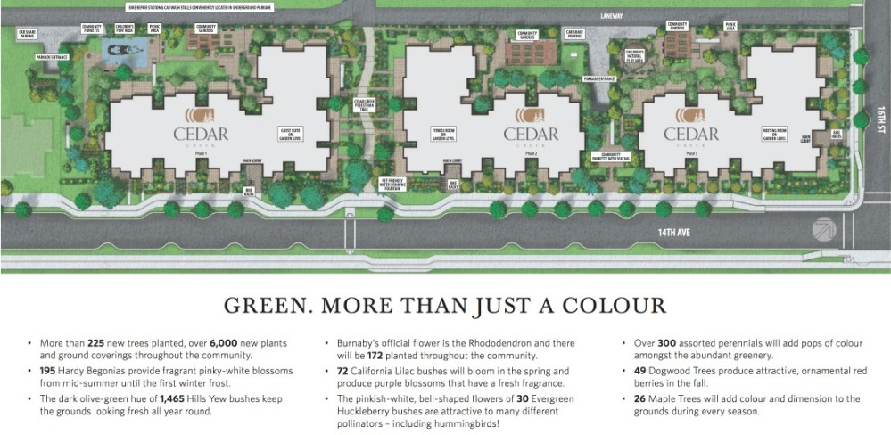 Cedar Creek Burnaby - site plan