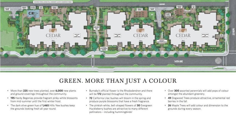 Cedar Creek Burnaby - site plan